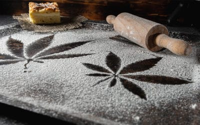 Edible Cannabis Products for Beginners