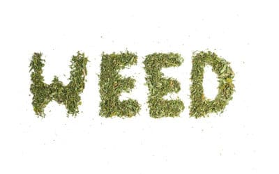 Weed Terms That Are Helpful To Know